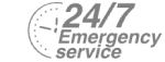 24/7 Emergency Service Pest Control in Belgravia, Westminster, SW1. Call Now! 020 8166 9746
